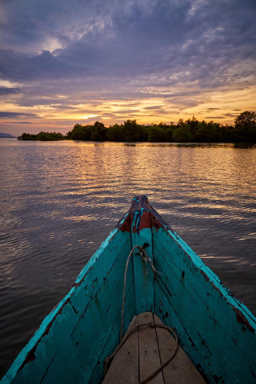 COucher de soleil sur la mangrove