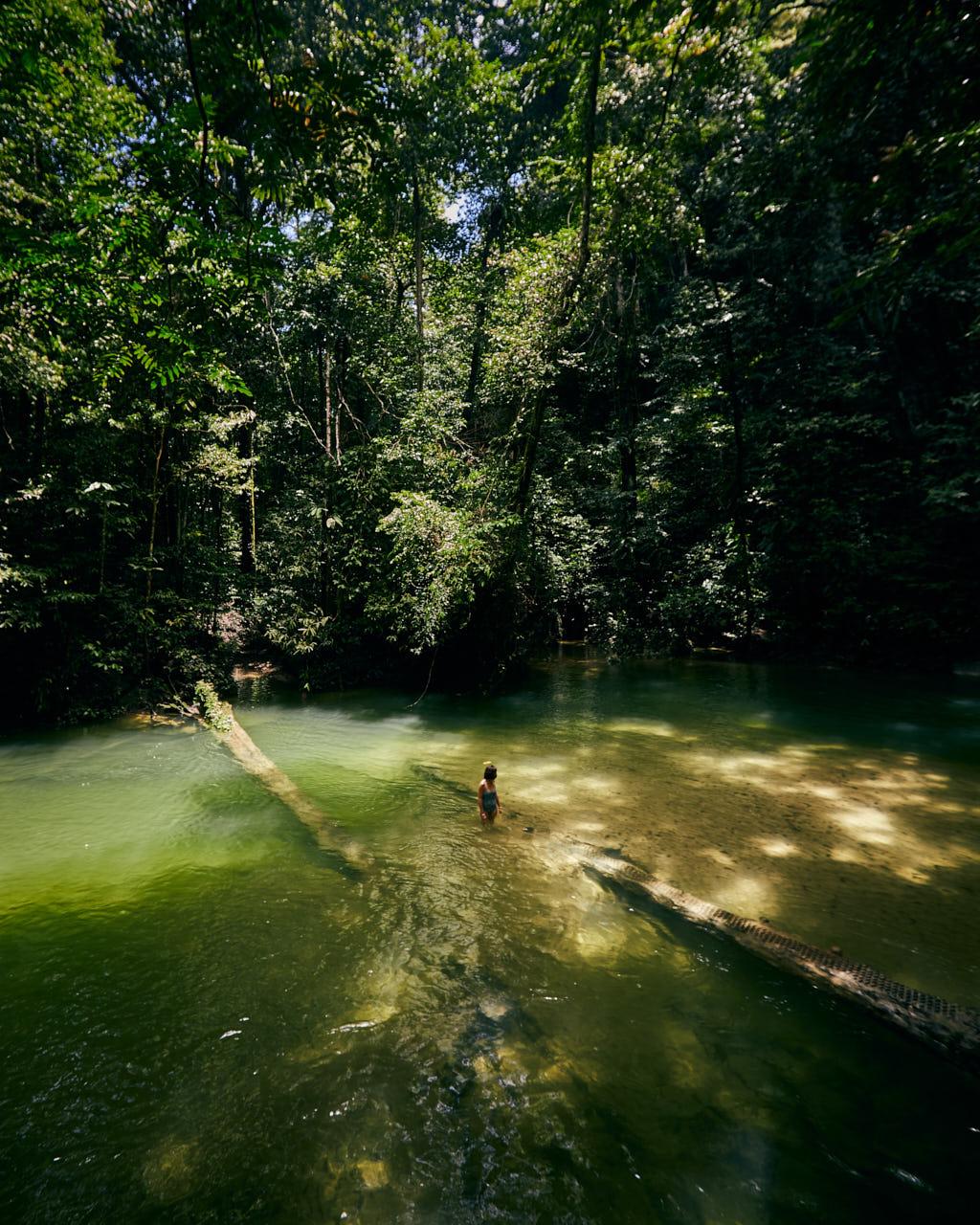 Une femme dans l'eau entre deux arbres