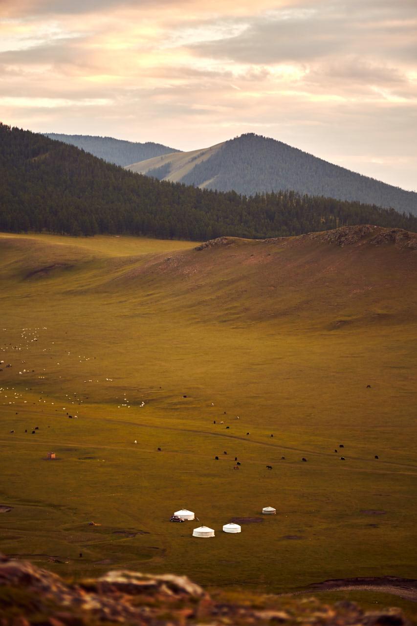 Yourtes dans un paysage Mongol