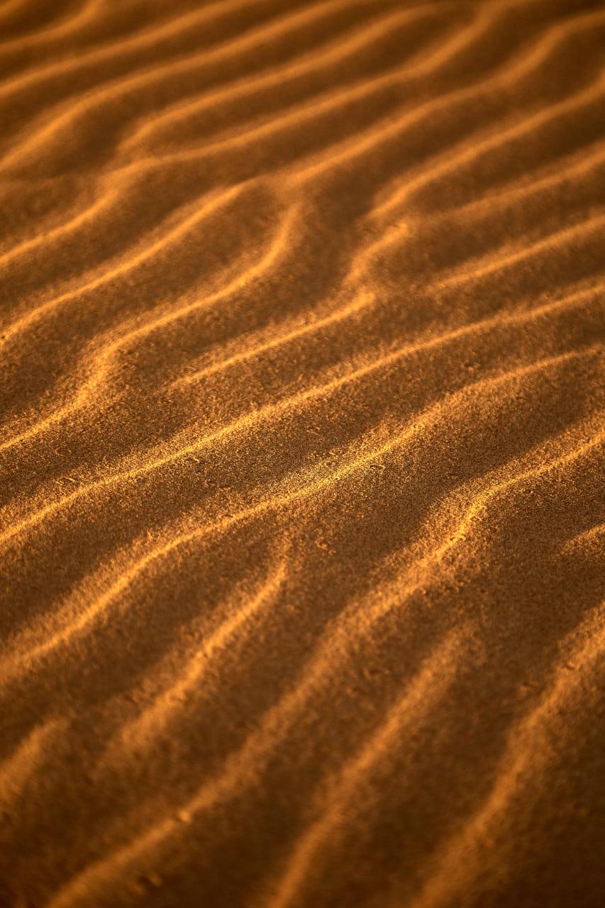 Zoom sur les dunes de sables