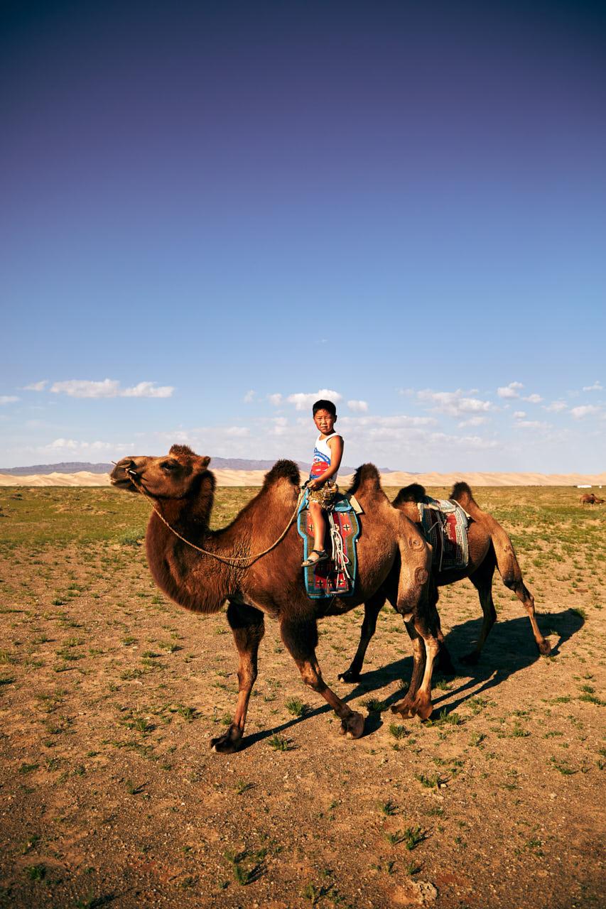 Enfant mongol sur un chameau de gobi