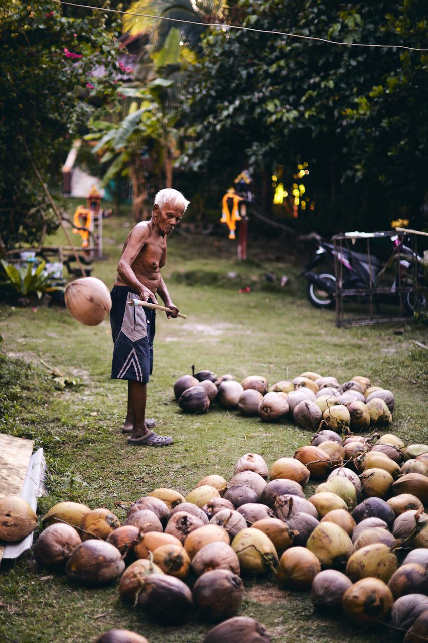 Un homme jette une noix de coco