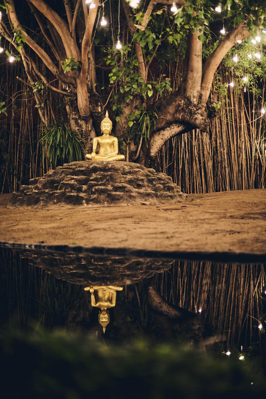 Un bouddha en or et son reflet