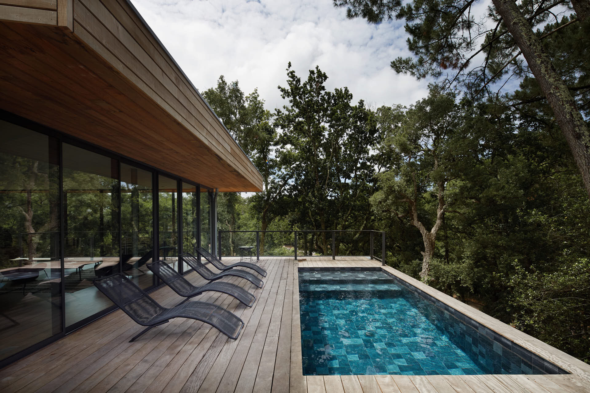 Pool with a pine trees view