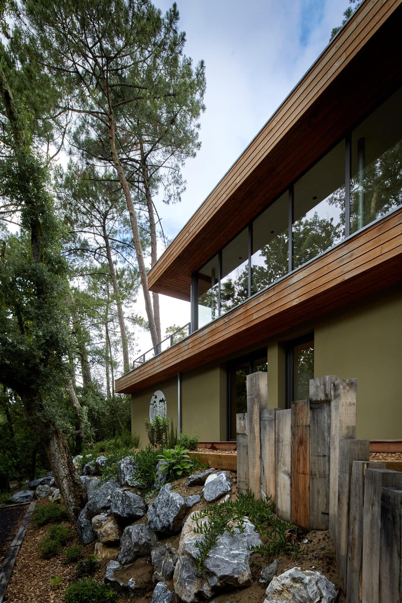 Lignes de la villa de la Forêt